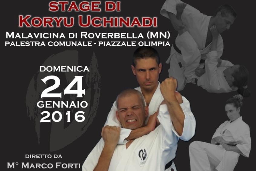 Stage di Koryu Uchinadi a Malavicina di Roverbella (MN)