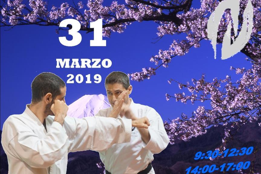 Spring Seminar 2019