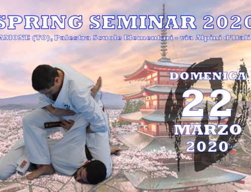 Spring Seminar 2020